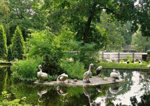 Зоопарк Калининград экскурсии Янтарная Мозайка