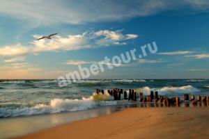 пляж в Зеленоградске фото