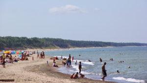 пляж поселка Лесной Калининградской области фото