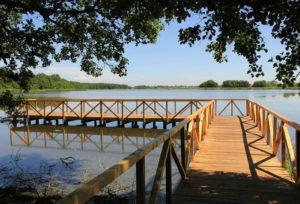 пляж озера Чайка Калининградской области фото