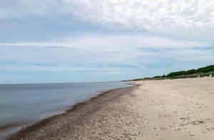 пляж поселка Рыбачий фото