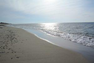 пляж в поселке Морское фото