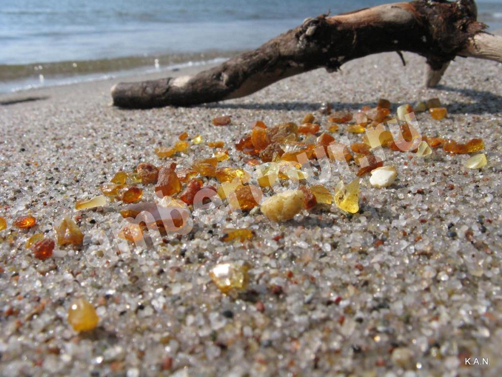 пляж на Балтийском берегу фото