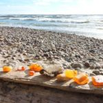 балтийский берег фото